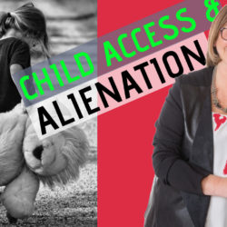 manipulation of child access is parental alienation